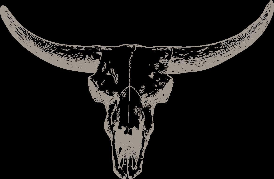 bg-skull